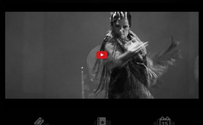 Suma Flamenca 2017