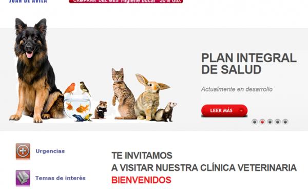 Clínica Veterinaria Juan de Ávila