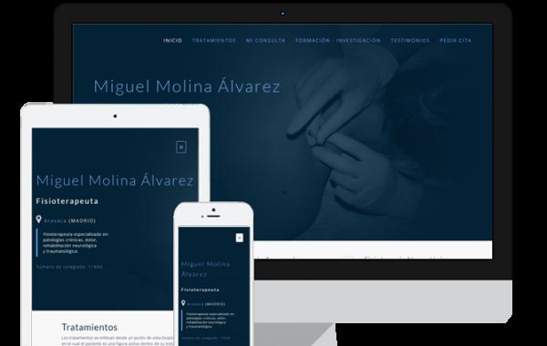 Fisioterapeuta Miguel Molina